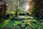 _Garten