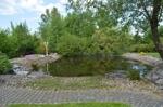 großer Teich mit Fischen