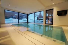 Luxus-Schwimmhalle....png