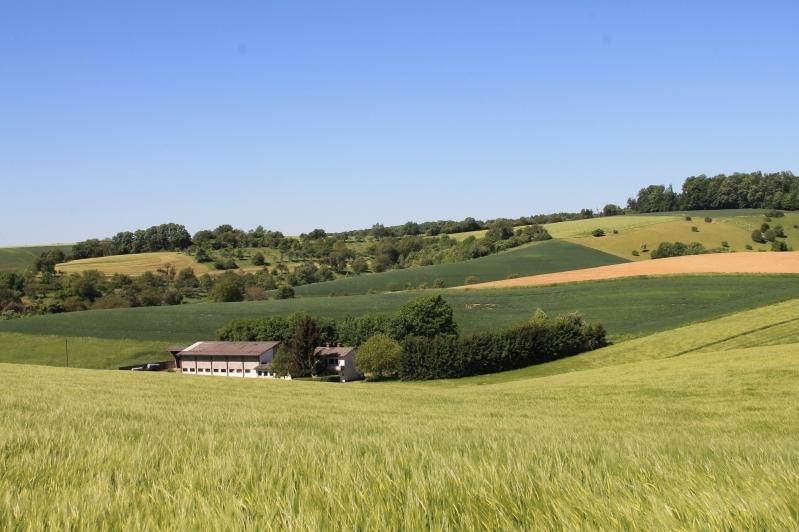 Eingebettet in Felder und Wiesen