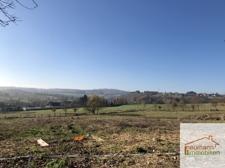 Blick über das Grundstück