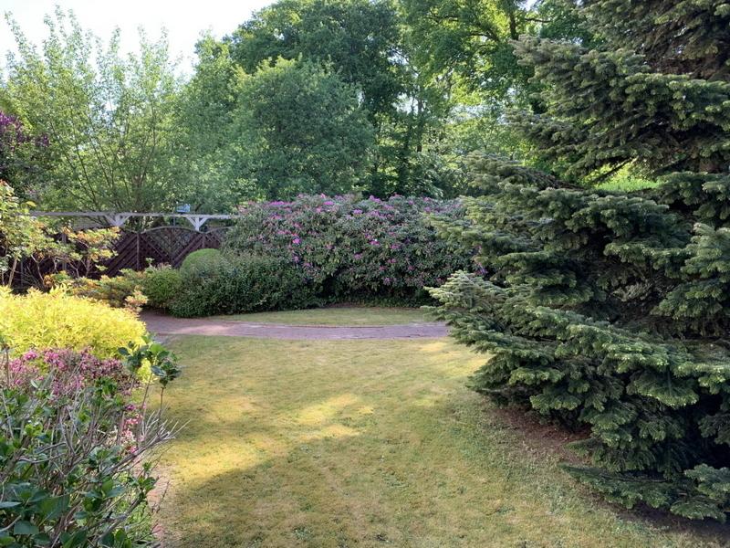 Garten vorn