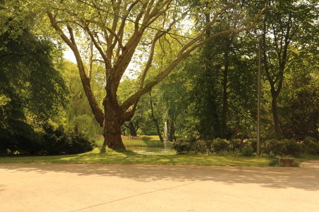 Park (3)