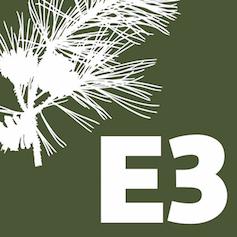 logo_e3