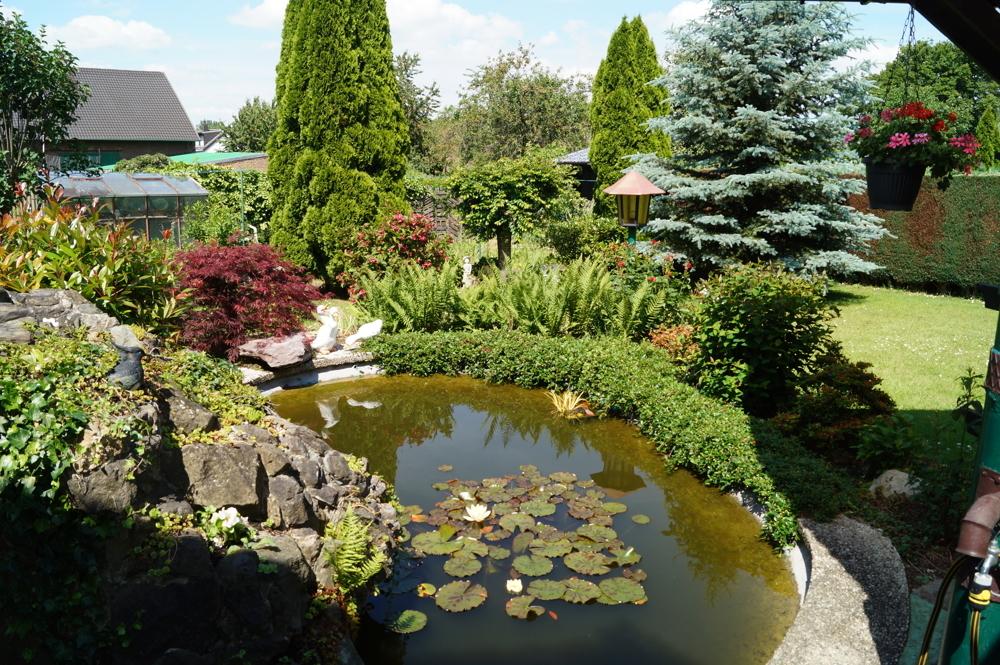 Garten und Teich