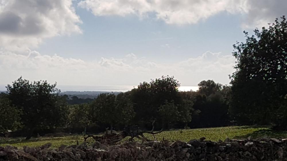 Grundstück mit Meerblick