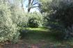 PM07314_Baugrundstueck_Cala-Murada_04