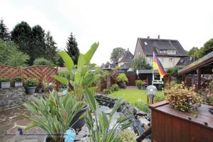 Blick in den Garten(1)