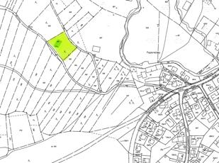 FlNr 814 Waldstück