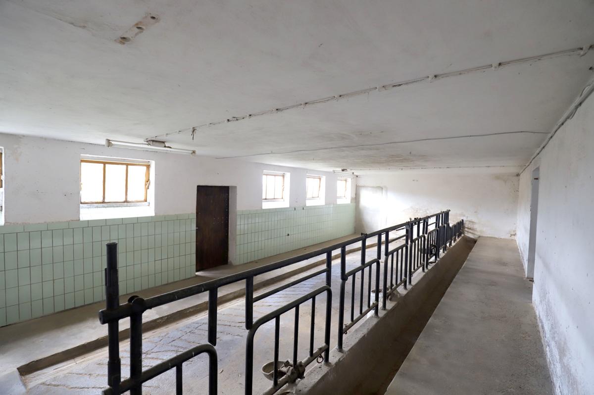 ehemaliger Rinderstall