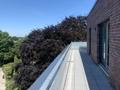 Dachterrasse III