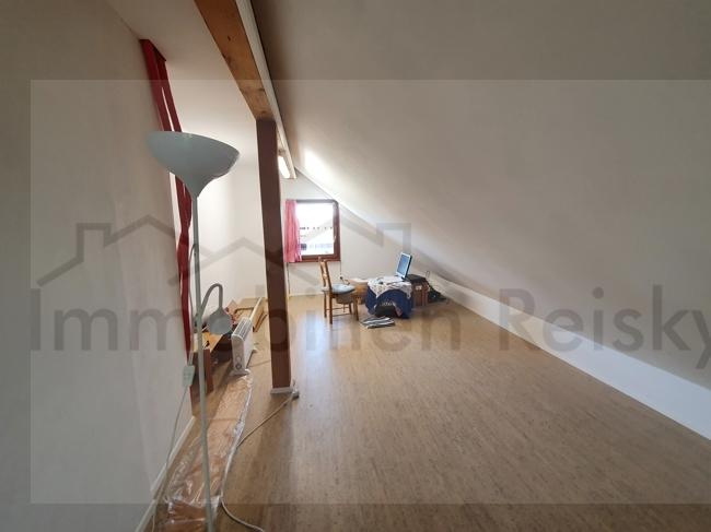 Zimmer DG2