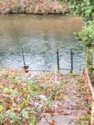Garten zum Fluss