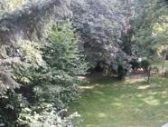 Blick in den Garten.png