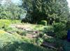 Bereich Garten-Gartenbeet