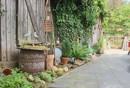 Garten mit Schuppen