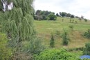 umgeben von Grün