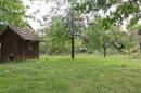Garten mit Baumbestand