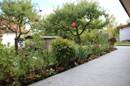 Terrasse mit Gartenbeet