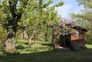 Mit kleinem Gartenhaus