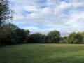 Blick vom Grundstück zur Muldenaue