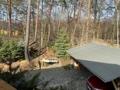 Blick vom Balkon in Ihren Wald