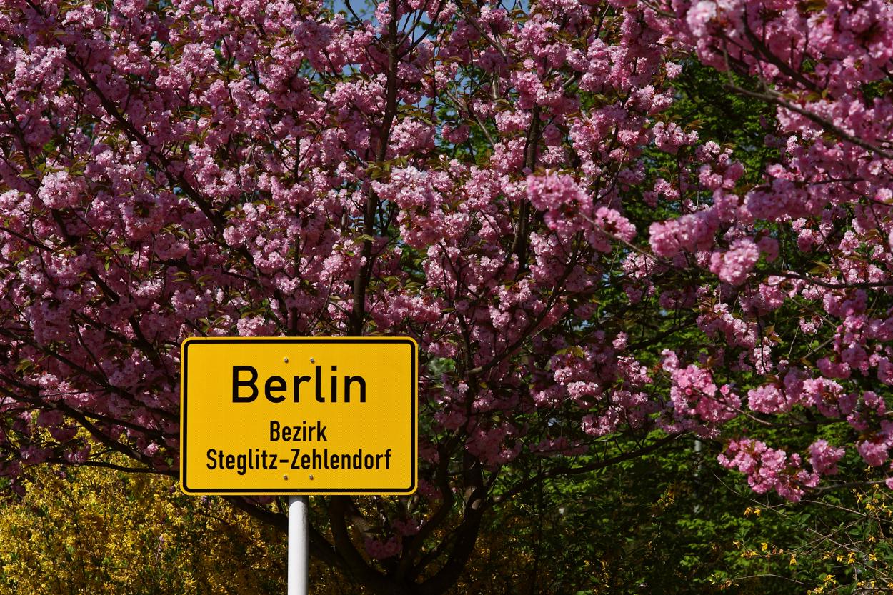 Steglitz