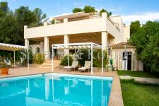 Haus + Pool 2