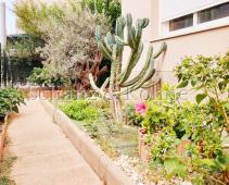 Garten-/Terrassenbereich