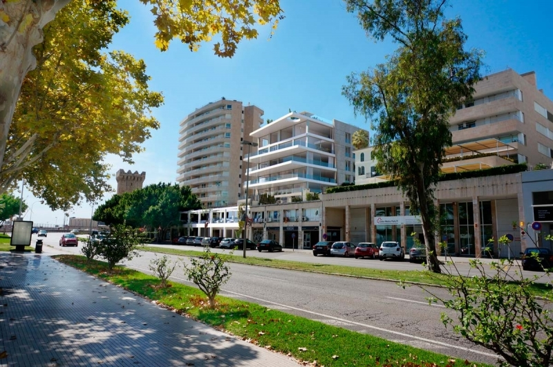 Buy apartment at the port of Palma