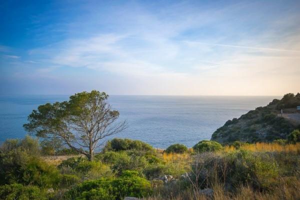 Baugrunstück Mallorca