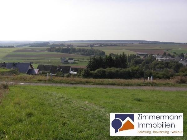 Südhanglage mit Panoramablick I