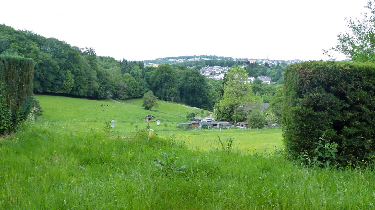 herrlicher unverbaubarer Ausblick ins Grüne