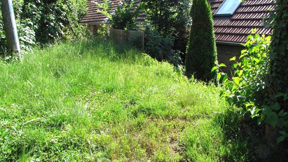 Kleiner Garten 1