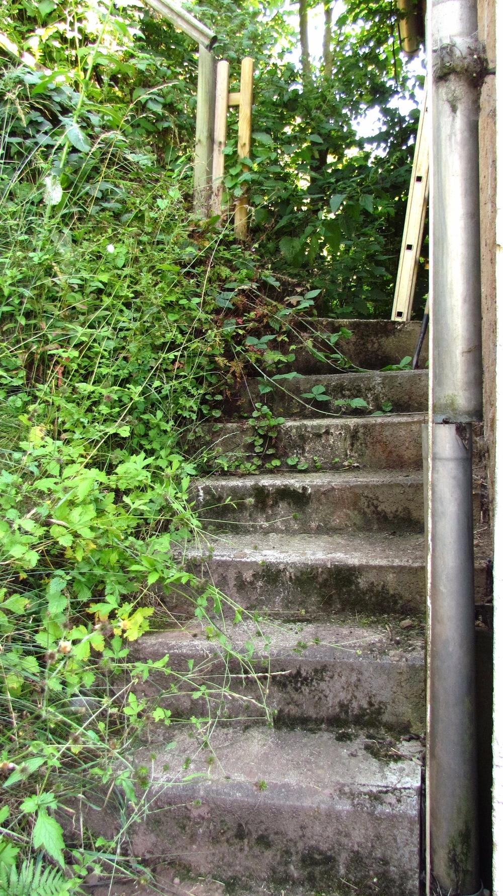 Treppe zum kleinen Garten