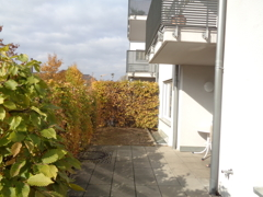 S/W Terrasse