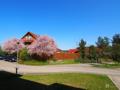 Aussicht Osten Lewitz