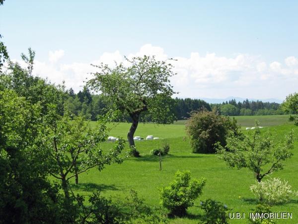 Der Blick vom Westbalkon