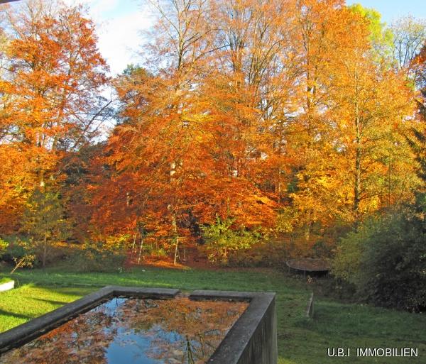 Suedlicher Garten im Herbst