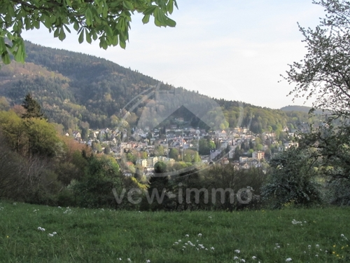 Badenweiler Frühling