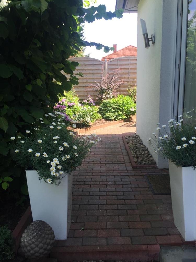 Terrasse/Garten WE