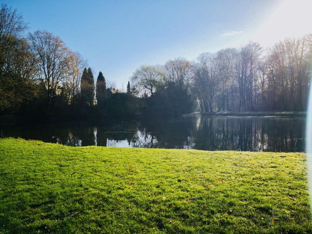 Nahegelgener Park
