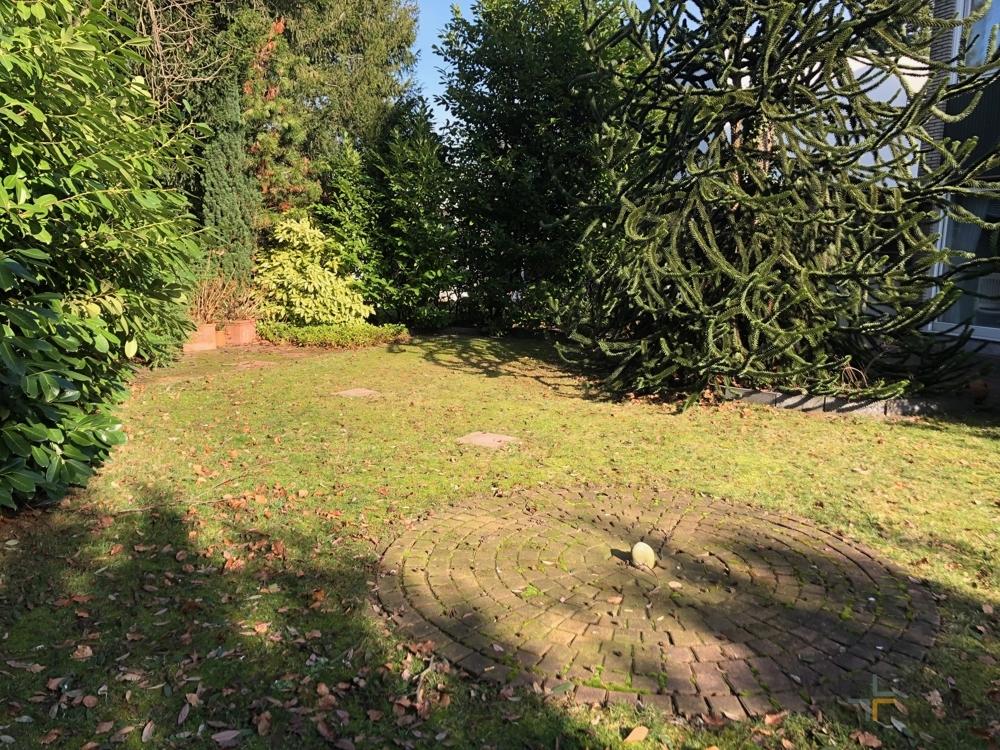 Gartenfläche wir neu gestaltet