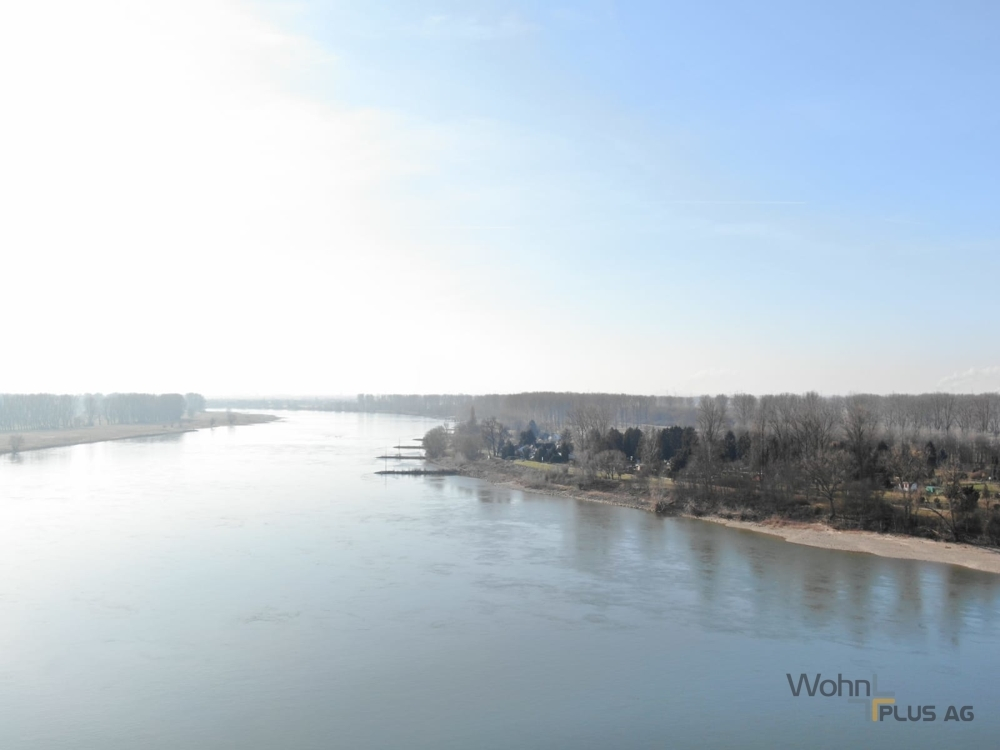 Rhein in unmittelbarer Nähe
