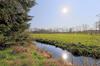 Bach - Naturschutzgebiet