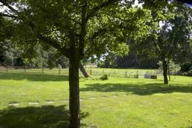 Gartengrundstück mit Blick zum Wäldchen