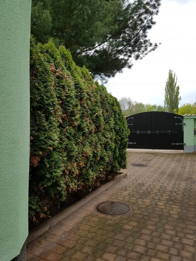 Hof-Haus-2