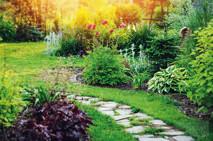 Musterbild Garten