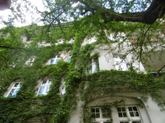 Außenansicht Fassade Vorderhaus 2