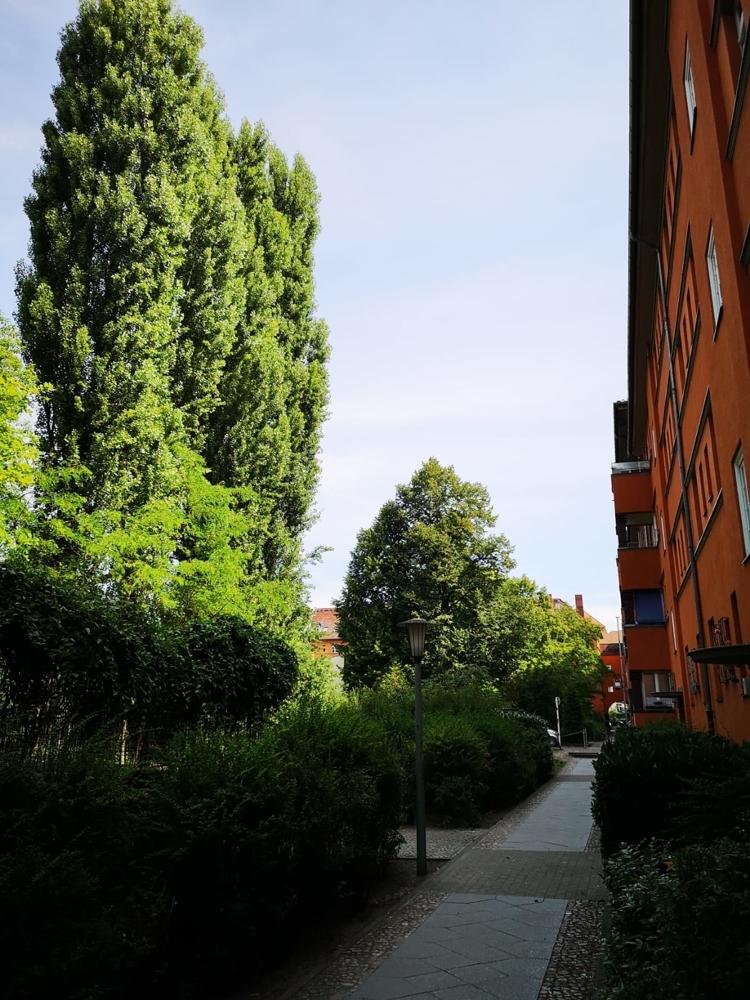Seitenansicht mit Grün